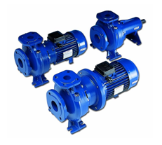 ตัวแทนจำหน่าย ศูนย์บริการ ร้านขายปลีก-ขายส่ง เสนอราคา เช็คราคา เครื่องสูบน้ำ-ปั๊มน้ำหอยโข่ง LOWARA รุ่น FH (Centrifugal electric pumps in compliance with EN 733 - DIN 24255) โดย MOVE ENGINEERING