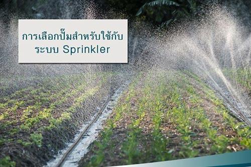 เลือกปั๊มน้ำสำหรับระบบ Sprinkler