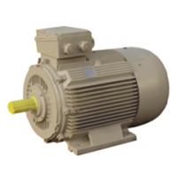 ตัวแทนจำหน่าย ร้านขายมอเตอร์ไฟฟ้ารุ่นมาตรฐาน HASCON Standard Electirc Motors